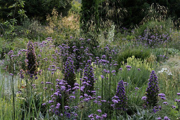 garden by Peter Janke at his nursery, Hortus, in Hilden, Germany  (photo by Jürgen Becker)