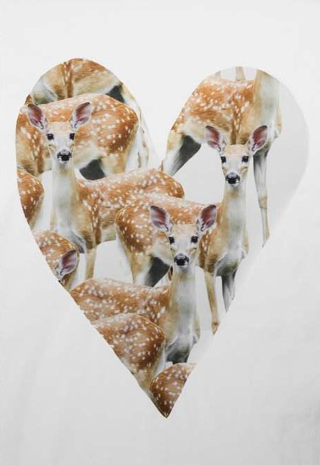Oh deer: Wild Animal, Los Bambi, Inspiration, Animal Collection, Art Design, Graphics Design, Dear, Stuffed Animal, Deer Heart