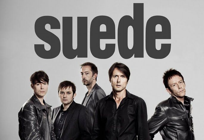 Image result for suede, band