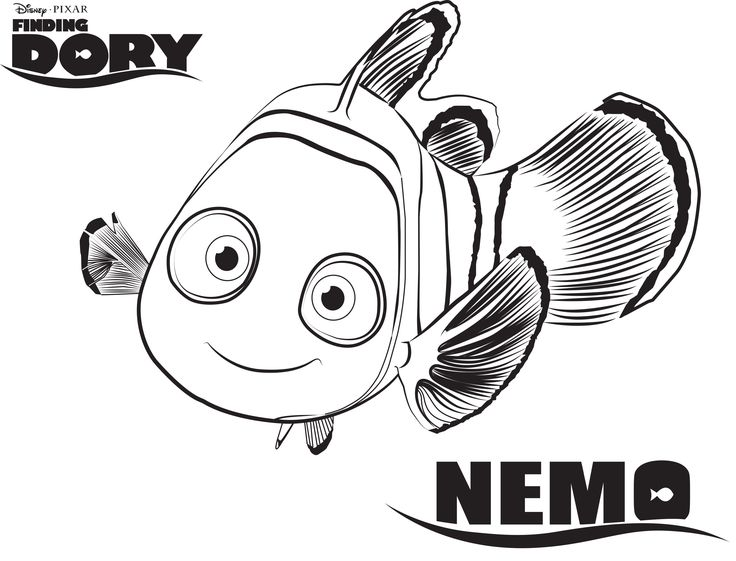 22 best dory busca a nemo images on pinterest drawings finding