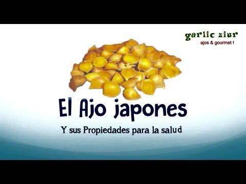 Beneficios del Ajo japones, sus propiedades para la salud, como tomarlo - www.garlicziur.com.mx - YouTube