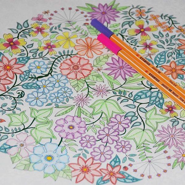 """Vedd meg együtt olcsóbban a felnőtt színező könyvet és a színezéshez használt tűfilc készletet! A világsiker <a href=""""http://rajzshop.hu/termek/johanna-basford-titkos-kert-felnott-szinezo-konyv/"""">Titkos kert színező</a> és a Stabilo népszerű,<a href=""""http://rajzshop.hu/termek/stabilo-point-88-tufilc-keszlet-20db-os/"""">20 színt tartalmazó tűfilc készlete</a> 1000 Ft kedvezménnyel!"""