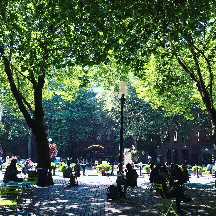 Beautiful summer afternoon. 夏の午後のひととき。 _ _ _  #seattle #pioneersquare #washingtonstate #visitseattle #seattlelife #seattlelove #usa #america #summer #afternoonwalks #シアトル #ワシントン州 #パイオニアスクエア #アメリカ #アメリカ生活 #午後の散歩 #夏