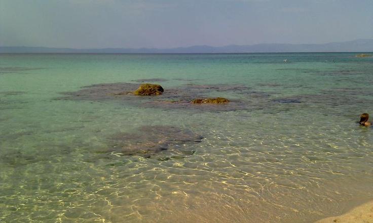 Beach in Sithonia