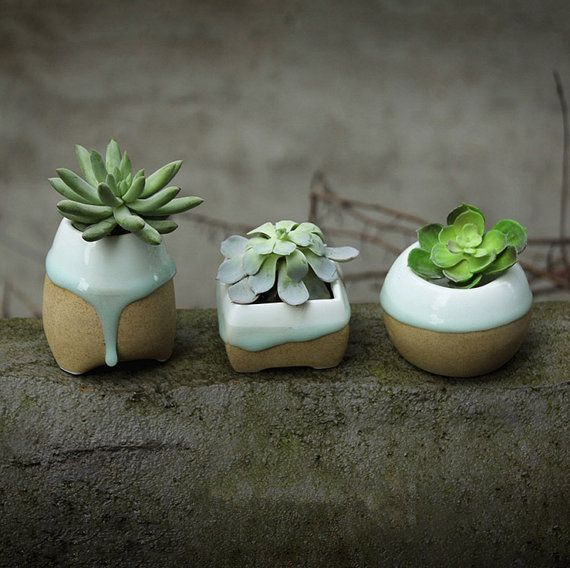 Cute succulent planter, made of dropping glazed porcelain and frosted pottery.  Also nice garden decoration.  Three types to choose, as marked in the