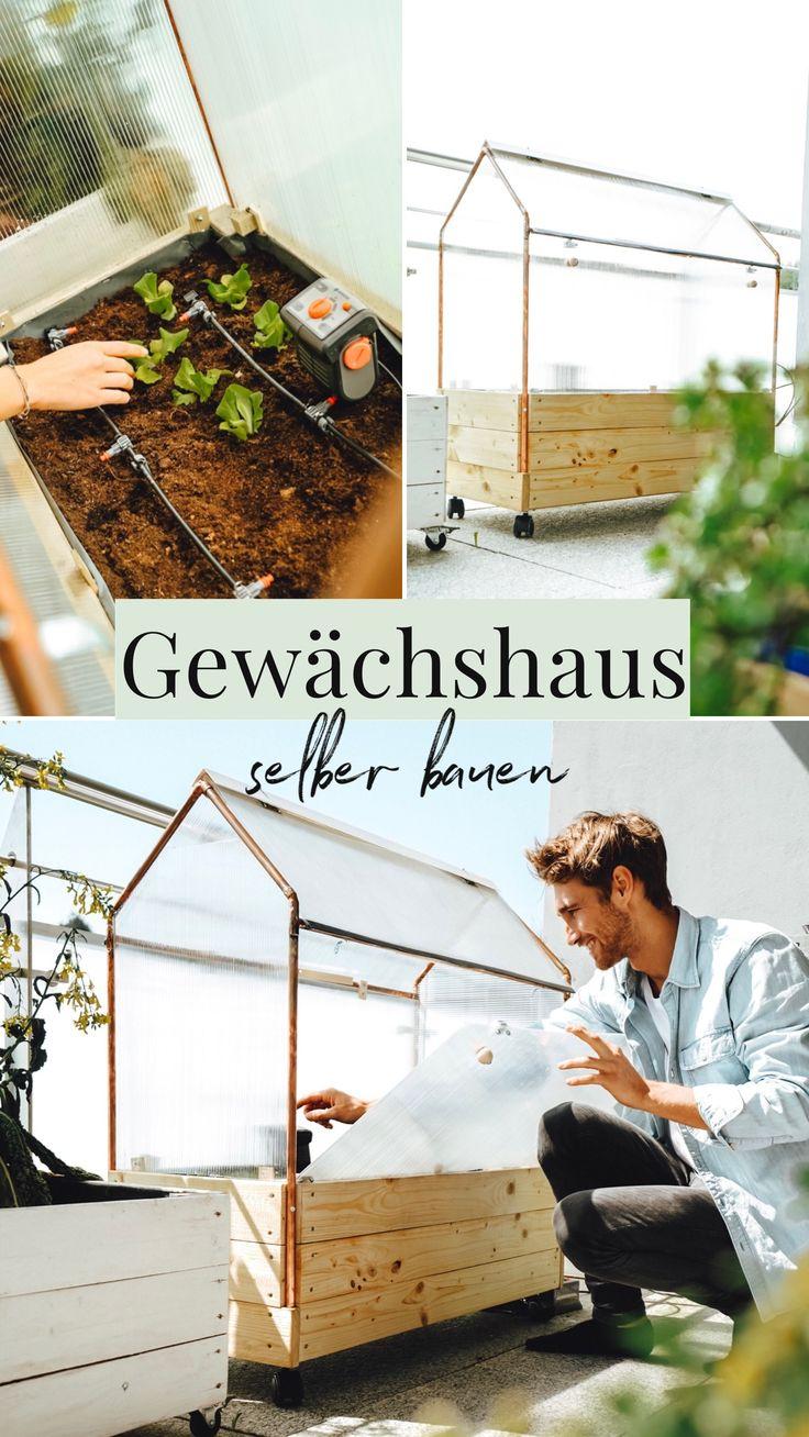 DIY Gewächshaus selber bauen, Selbstversorger, urban gardening