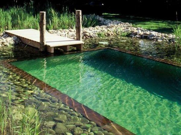 piscine-naturelle-main-
