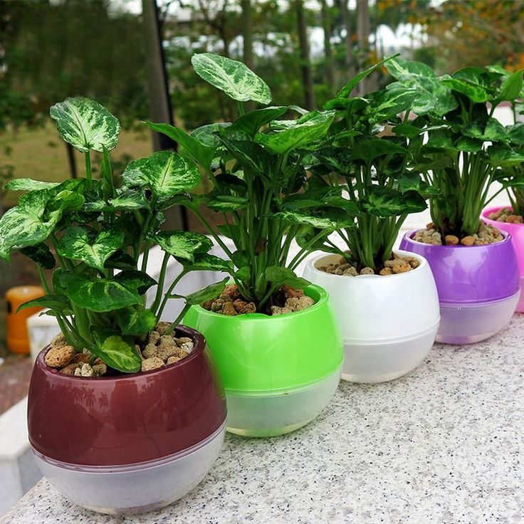 Self Watering Planter Flower Pots (Mixed Colors)