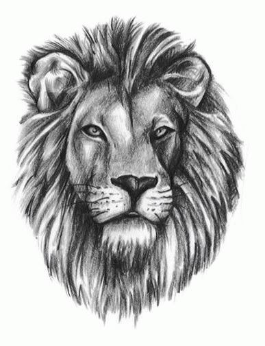 small+lion+tatoos+for+women | Lion Tattoos Page 6
