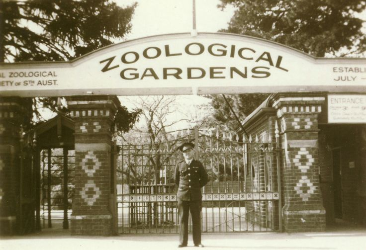 Adelaide Zoological Gardens in the 1940s.