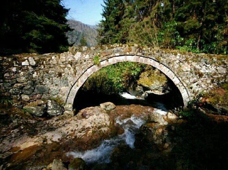 Bridge-Konaklar bridge-Constructive: Peasantry-Built year: Late 19th century-Wright: Haji Emin-Konaklar village-Camlıhemşin-Rize
