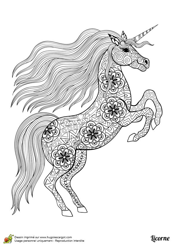 Dessin d'un mandala de licorne debout, à colorier