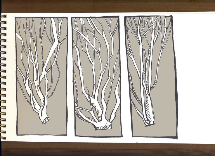 Brush Sketches : Pen and Digital Color Illustrations from Lake Washington.  by Amy Huber