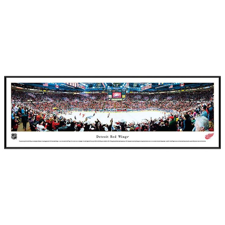 Detroit Red Wings Hockey Arena Framed Wall Art, Multicolor