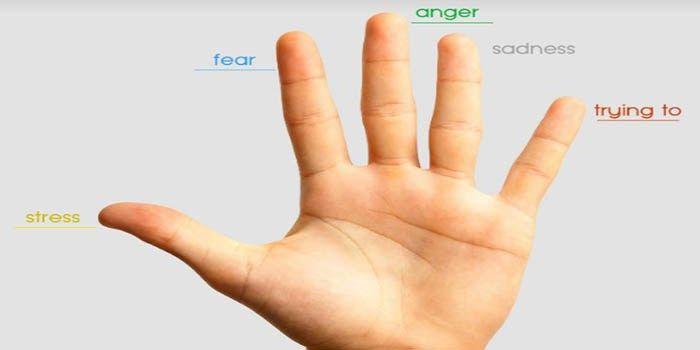 Volgens de Japanse arts Yin Shun Jyutsu, kunt udoor opeenvinger tedrukkenzich ontdoen van pijn, angst kwesties en angst krijgen. Duim– door uduim temasserenzultu zichzelfontdoen van maag...