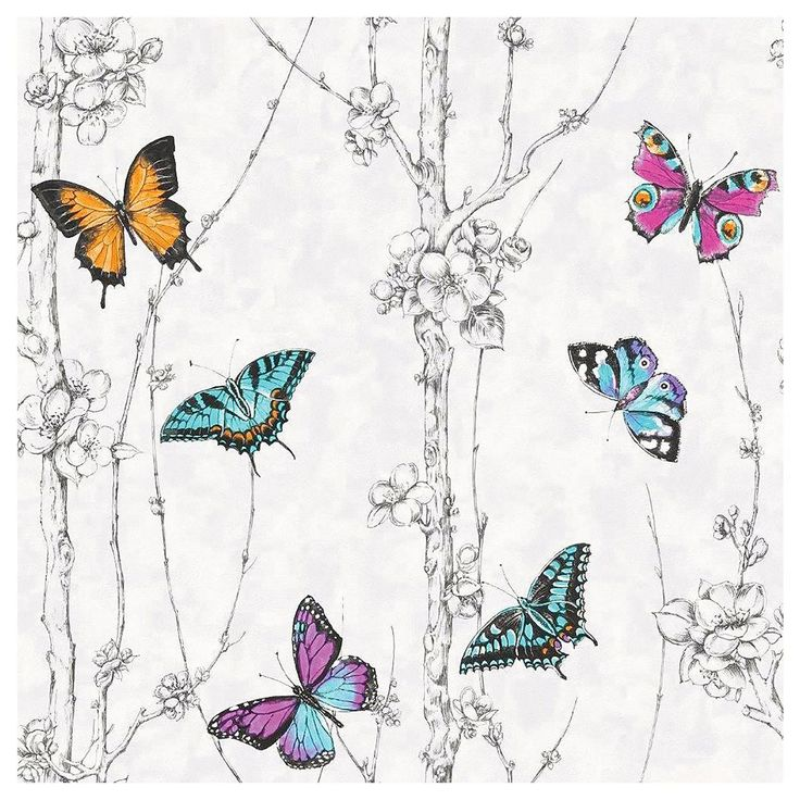Best 25 multicoloured wallpaper ideas on pinterest - Butterfly wallpaper homebase ...