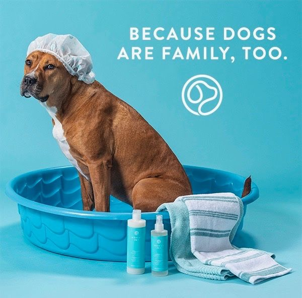 This Is The Best Dog Wash I Have Ever Tried It Gets Our Pooch