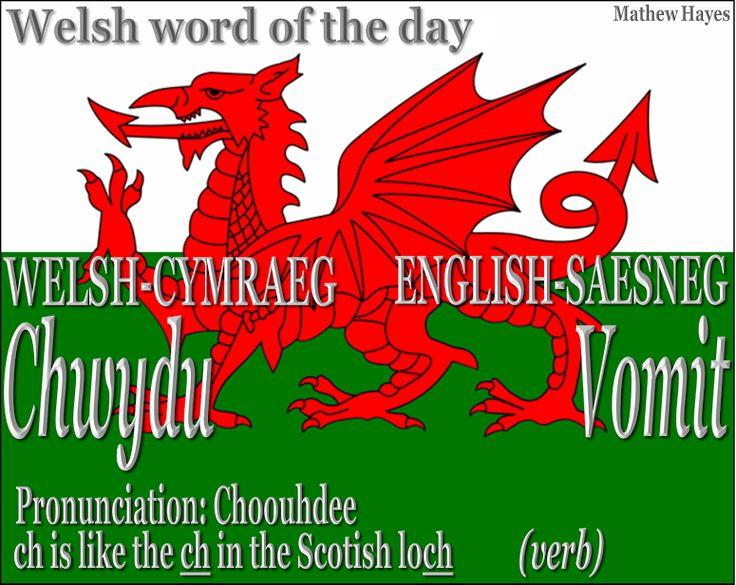 #Welsh word of the day: Chwydu/ #Vomit
