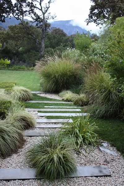 landscape path with ornamental grasses