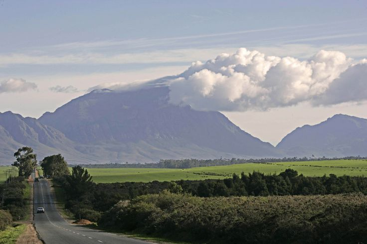 The road to Tulbagh, a 90 minute drive from Cape Town.