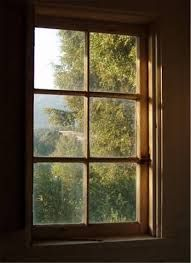Image result for paned windows house