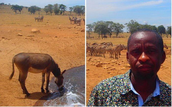 Спасение животных от засухи: мужчина ежедневно привозит воду в кенийский парк http://kleinburd.ru/news/spasenie-zhivotnyx-ot-zasuxi-muzhchina-ezhednevno-privozit-vodu-v-kenijskij-park/  Есть люди, которые готовы трудиться ежедневно не ради славы, а для того, чтобы помогать, спасать, решать насущные проблемы. Патрика из Кении никто не называет супергероем, но вместе с тем, то, что он делает, – почетно и важно. Патрик ежедневно привозит питьевую воду для диких животных, которые страдают от…