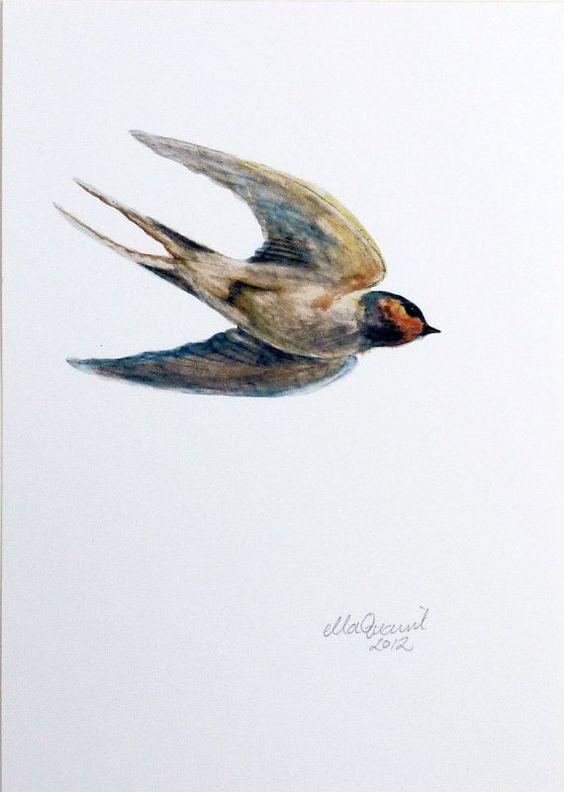 Swallow++a+blue+bird+Giclee+print+by+ellaCute+on+Etsy,+$42.00