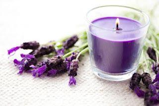 Lavanda- Planta curativa y mágica para el amor   Mhoni Vidente - Horoscopos y Predicciones