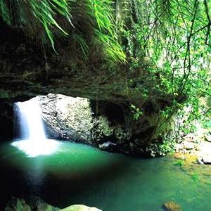 Encapsulating the scenically stunning Gold Coast Hinterland, Springbrook National Park takes you from bikinis and beaches to a world of lush green rainforest, serene in sound and majestic in ambiance.