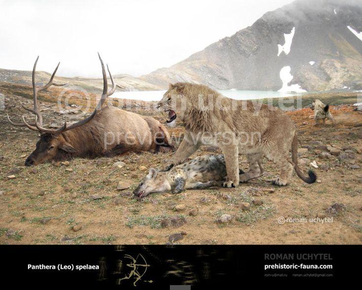 Panthera spelaea by Rom-u.deviantart.com on @DeviantArt