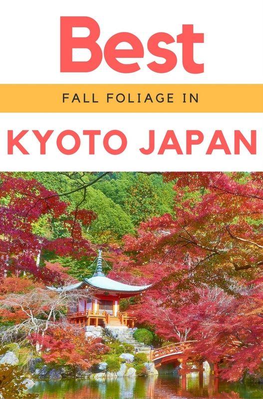 Best 25  Fall Foliage Map Ideas On Pinterest