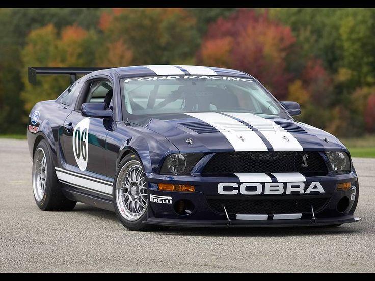 2006-Ford-Mustang-FR500-GT-Kaliteli-Angle-1024x768-model-araba-resimleri-duvar-kagidi-kagitlari.jpg (1024×768)