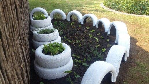 Small veggie garden