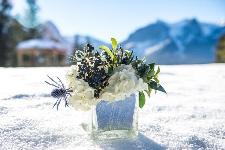 Rustic yet elegant centrepiece design in a silver crackle cube vase with eryngium, hydrangea & privet berries. Taken on location at @Silvertip Resort by @One Edition  www.flowersbyjanie.com Canmore Wedding Florist www.one-edition.ca www.silvertipresort.com