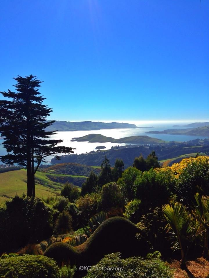 Perfection from Larnach Castle, Dunedin Taken by KC Photography