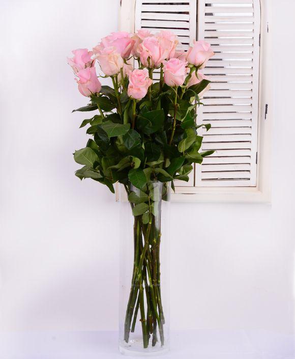 Nádherné vysoké ružové ruže Titanic.  #beautifulflowers #pinkroses #superise #deliveryflowers #kvetyexpres