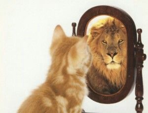 Zelfbeeld dat is het beeld dat je van jezelf hebt.Hoe je denkt wie  je bent.Dat kan op sociaal,emotioneel,cognitief,fysiek,materieel vlak.