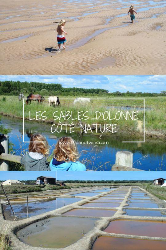 On vous emmène dans des coins nature tout près des Sables d'Olonne : plages sauvages, balades à vélo en bord de canal et dans les marais salants, lagune magnifique... Venez faire le plein de verdure, de calme et d'embruns!