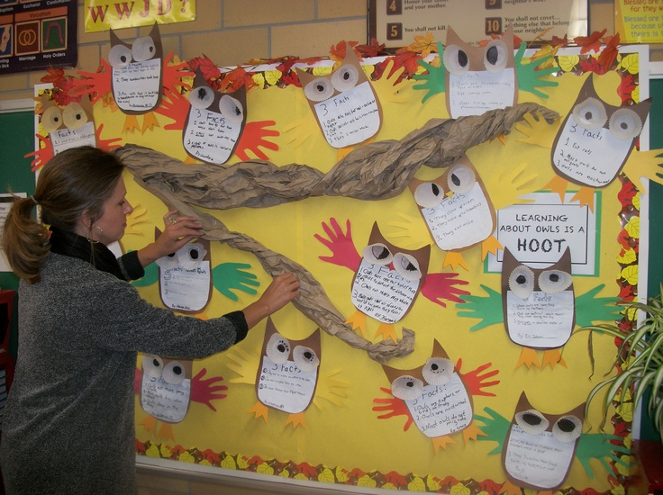 Classroom Decor Research ~ Best owl bulletin boards ideas on pinterest