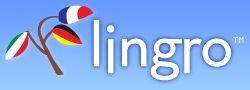 Lingro - Smart översättningsverktyg.