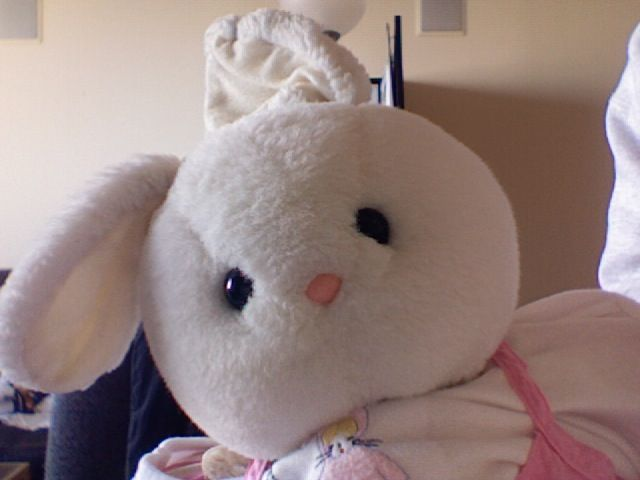 How To Clean Stuffed Toys 50