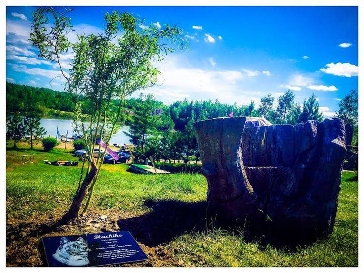 StoneArtUSA.com custom made memorial stones & cremation urns for pets.