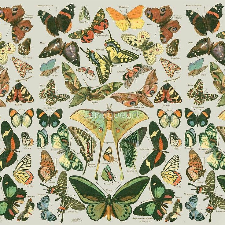 & # 39; Schmetterlingsmuster & # 39; Acrylblock von antiqueart Dieser hübsche Schmetterl …   – Travel