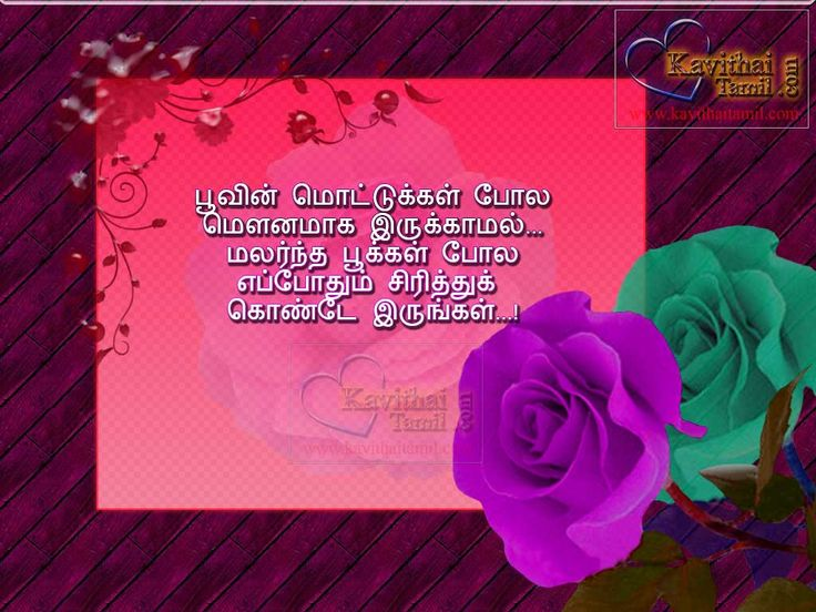 Tamil Motivational Quotes In HD Flower Photos With Super Tamil Kavithai Lines For Wishing Good Morning