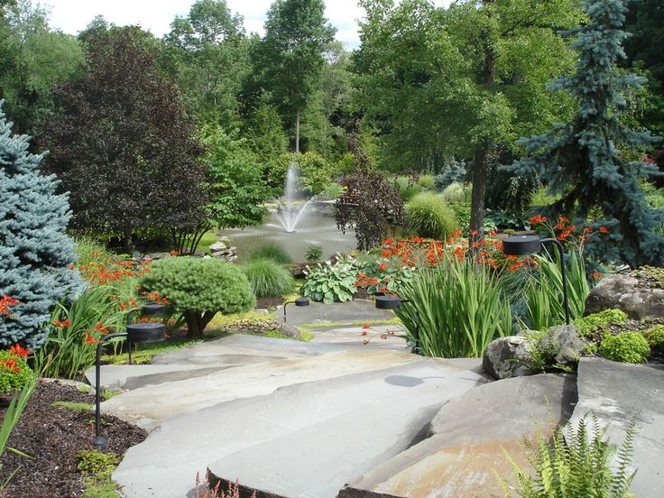 84 best images about custom water feature swimming pools for Natural garden pond design