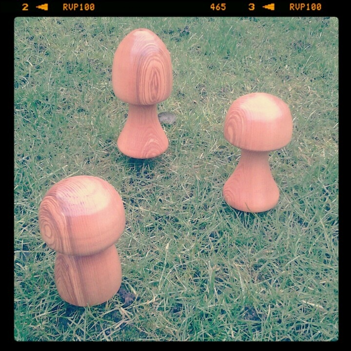 Mushrooms for the garden. Woodturning