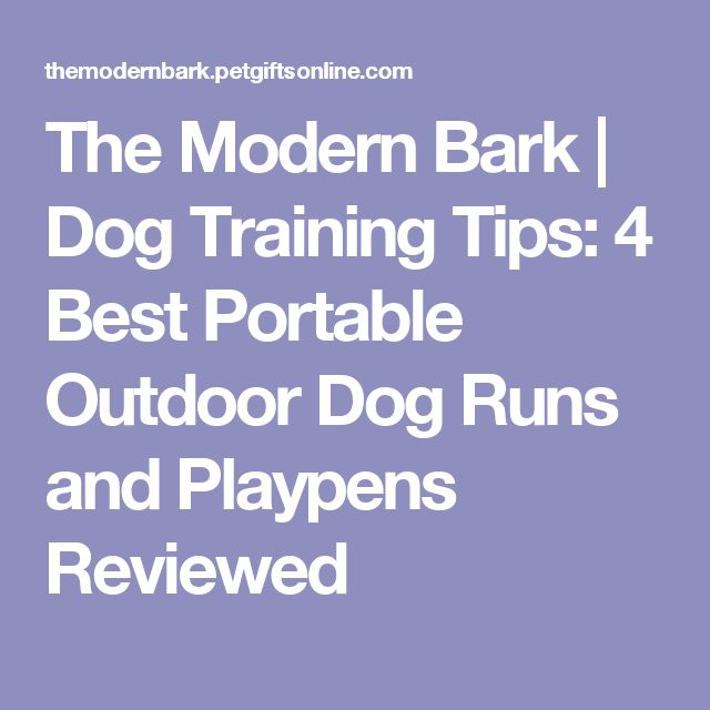 The Modern Bark | Dog Training Tips: 4 Best Portable Outdoor Dog Runs and Playpens Reviewed