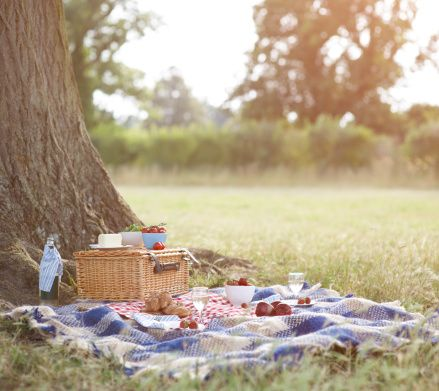 We love pic-nic. Better in the vineyards. Drinking our wines.