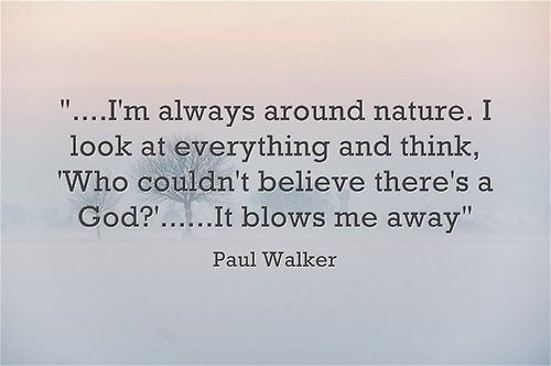 Paul Walker S Best Quote: 25+ Best Paul Walker Quotes On Pinterest