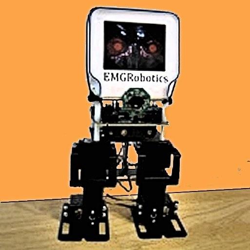 Freescale introduces sensor-laden humanoid robot platform for US$200